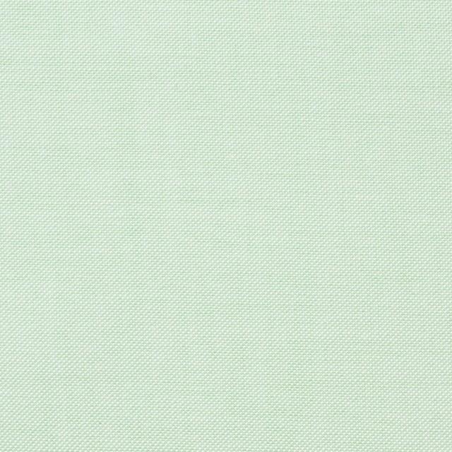 コットン×無地(イエローグリーン)×オックスフォード・シャンブレー イメージ1