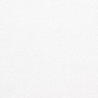 コットン×無地(オフホワイト)×セルビッチオックスフォード サムネイル1