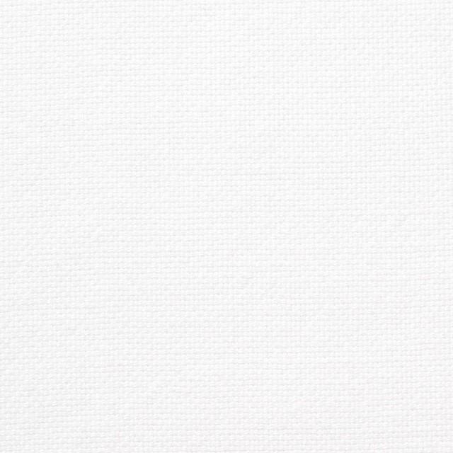 コットン×無地(オフホワイト)×セルビッチオックスフォード イメージ1