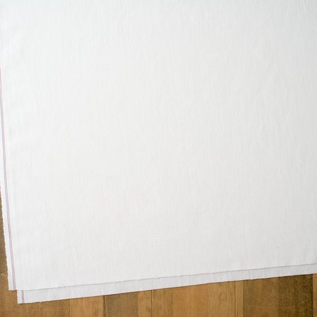コットン×無地(オフホワイト)×セルビッチオックスフォード イメージ2