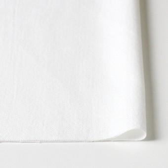 コットン×無地(オフホワイト)×セルビッチオックスフォード サムネイル3