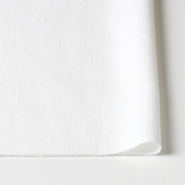 コットン×無地(オフホワイト)×セルビッチオックスフォード イメージ3
