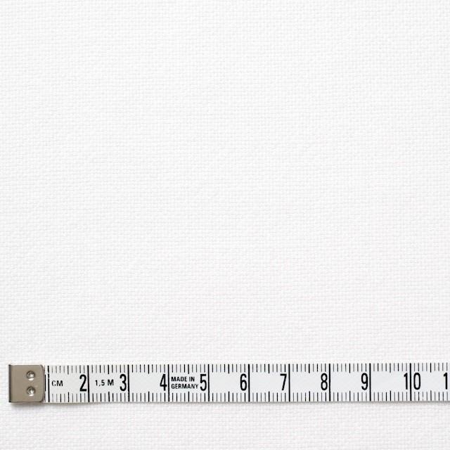 コットン×無地(オフホワイト)×セルビッチオックスフォード イメージ4