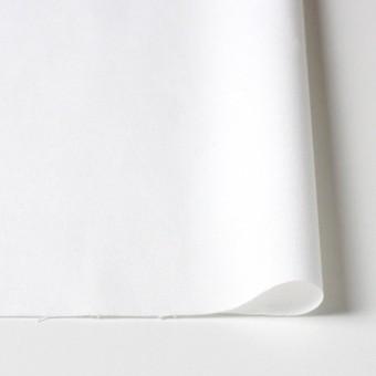 コットン×無地(オフホワイト)×オックスフォード サムネイル3