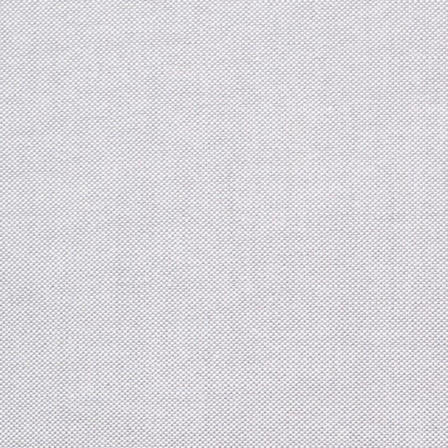 コットン×無地(ライトグレー)×オックスフォード・シャンブレー イメージ1