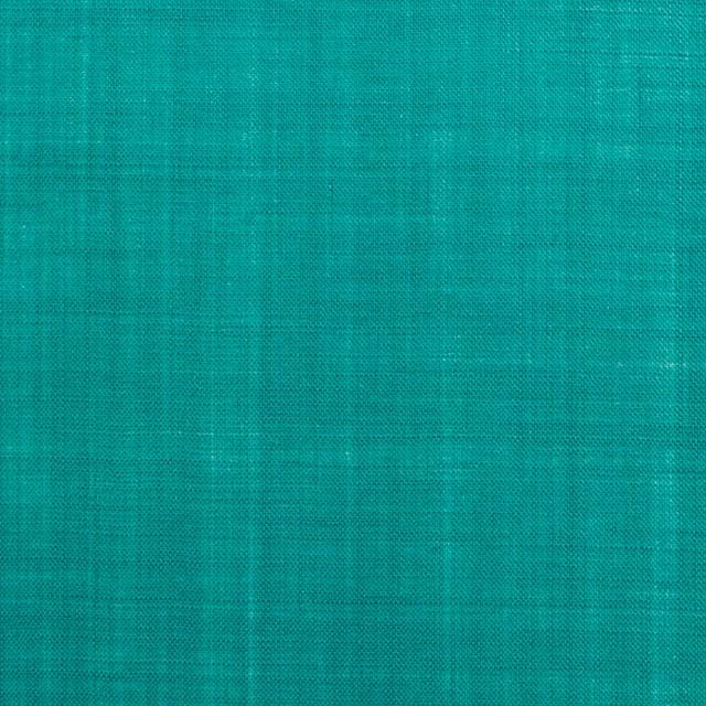ラミー×無地(エメラルドグリーン)×ボイル イメージ1