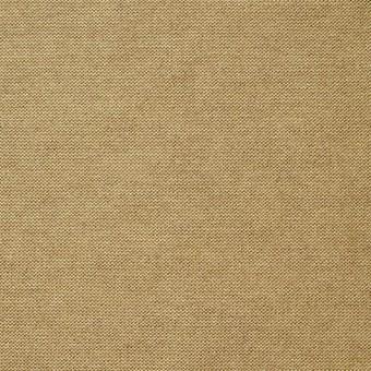 コットン&モダール×無地(ゴールド)×天竺ニット_全5色 サムネイル1