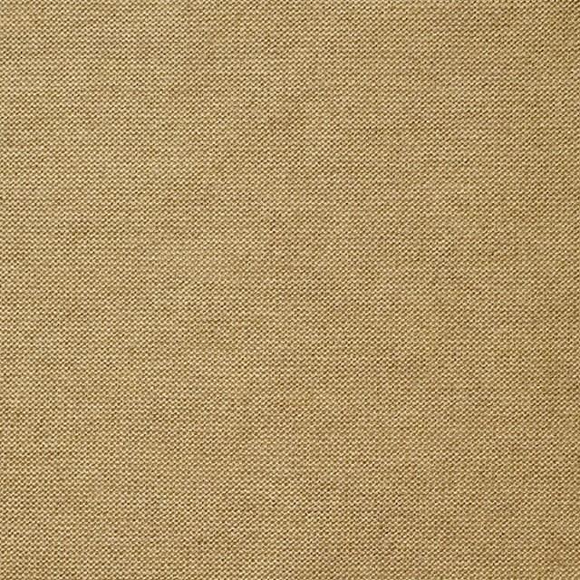 コットン&モダール×無地(ゴールド)×天竺ニット_全5色 イメージ1