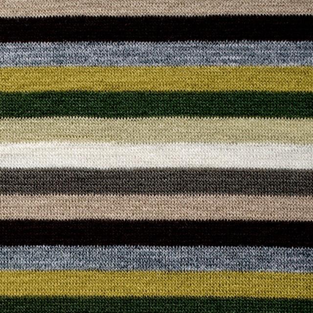 テンセル&ウール混×ボーダー(ライム&グリーン)×天竺ニット_全2色 イメージ1