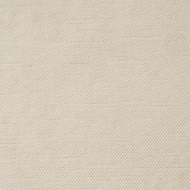 コットン×無地(アイボリー)×オックスフォード_全2色 イメージ1