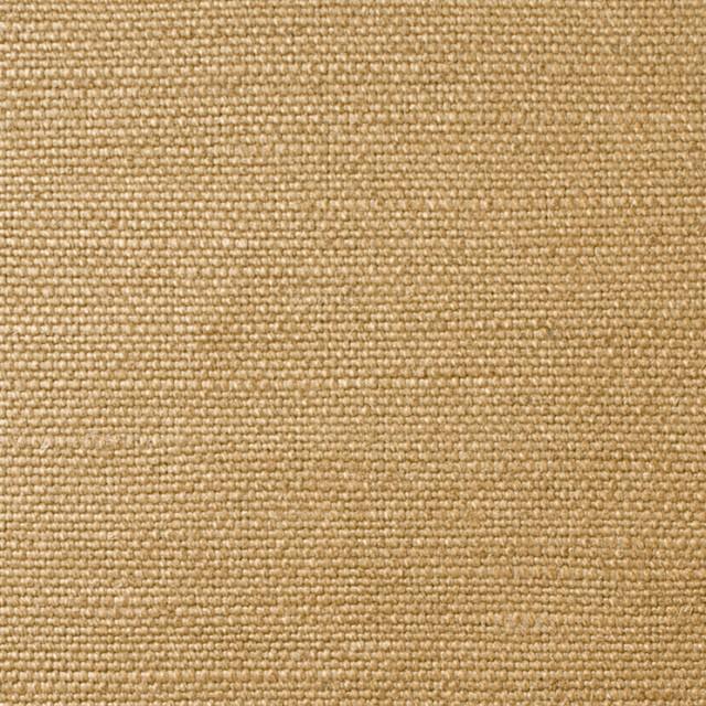 ラミー×無地(イエローゴールド)×8号帆布 イメージ1