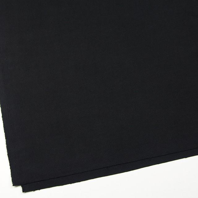 コットン×無地(ブラック)×厚オックスフォード イメージ2