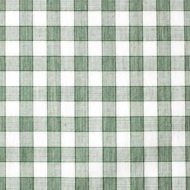 コットン×チェック(グリーン)×ブロード イメージ1