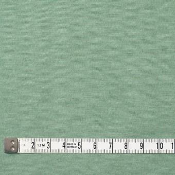 コットン×無地(ゴーディグリーン)×天竺ニット_全10色 サムネイル4