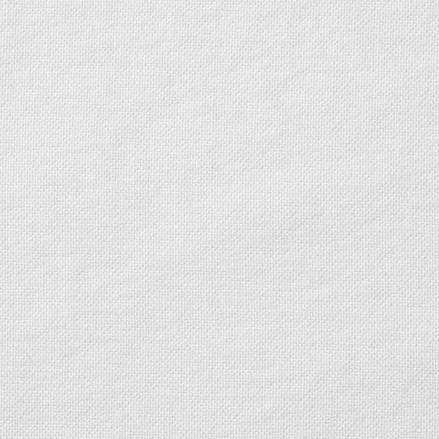 コットン×無地(オフホワイト)×オックスフォード_全3色 イメージ1