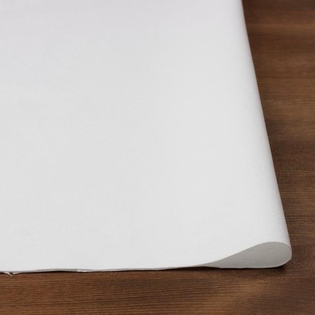 コットン×無地(オフホワイト)×オックスフォード_全3色 イメージ3