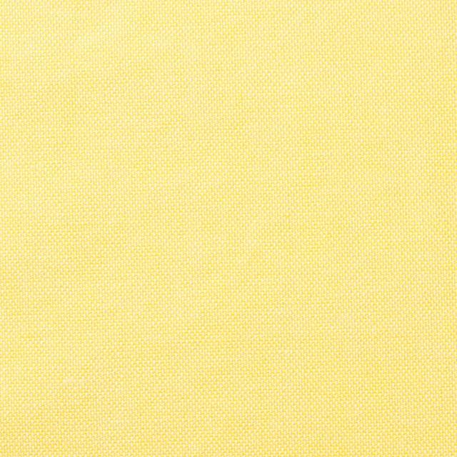 コットン×無地(イエロー)×オックスフォード・ワッシャー_全4色 イメージ1