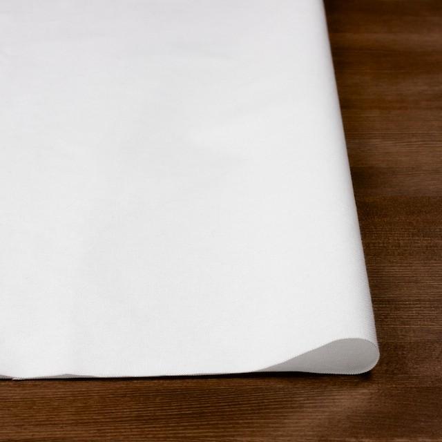 コットン×無地(オフホワイト)×オックスフォード・ワッシャー_全4色 イメージ3