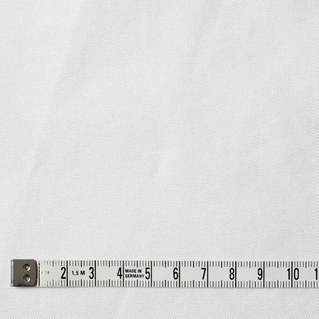 コットン×無地(オフホワイト)×オックスフォード・ワッシャー_全4色 イメージ4