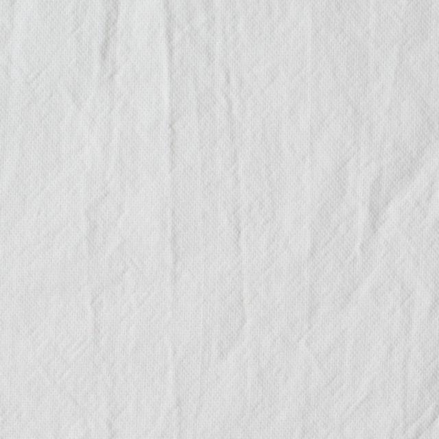 コットン×無地(ホワイト)×オックスフォード・ワッシャー イメージ1