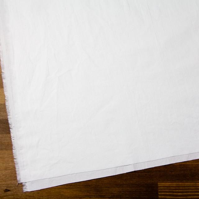 コットン×無地(ホワイト)×オックスフォード・ワッシャー イメージ2