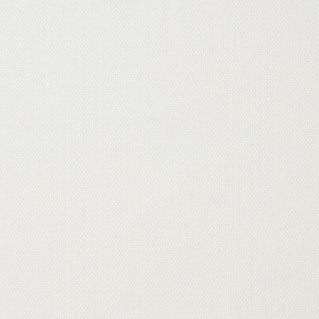 コットン&ポリウレタン×無地(オフホワイト)×オックスフォード・ストレッチ イメージ1