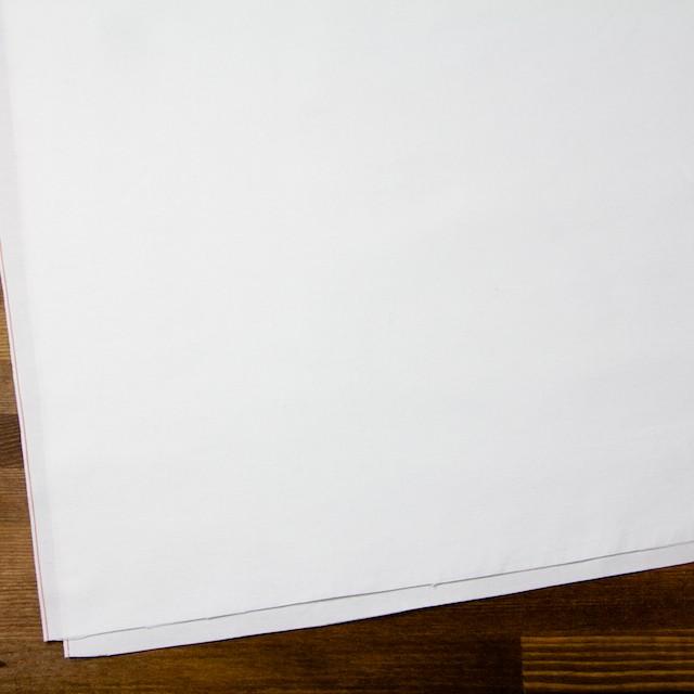 コットン×無地(オフホワイト)×オックスフォード イメージ2