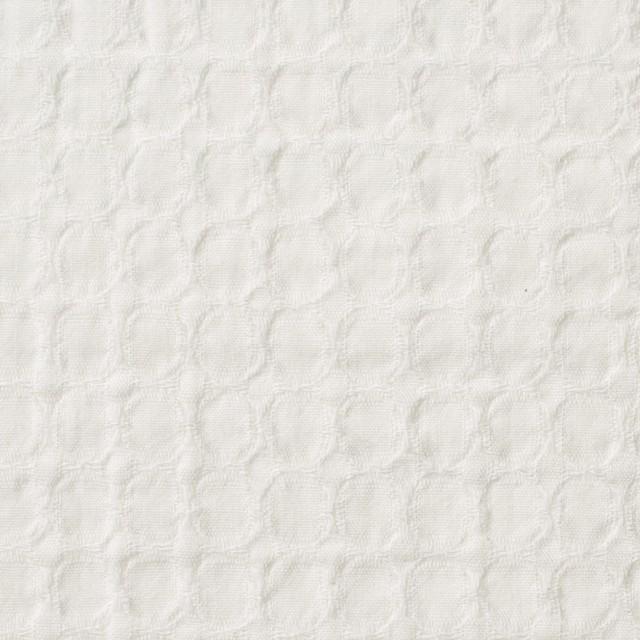 コットン×無地(オフホワイト)×シーチングドビー_全2色 イメージ1