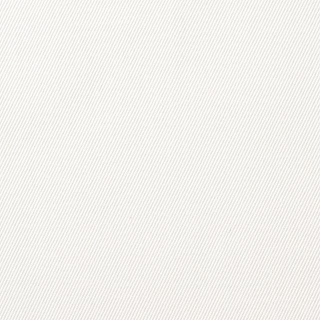 コットン×無地(オフホワイト)×チノクロス(ウエポン)_全2色 イメージ1