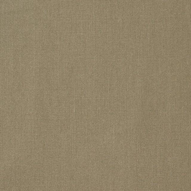 コットン×無地(カーキ)×ブロード イメージ1