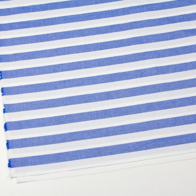 コットン×ボーダー(ブルー)×オックスフォード_全3色 イメージ2