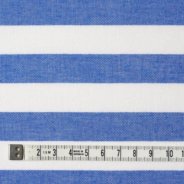 コットン×ボーダー(ブルー)×オックスフォード_全3色 イメージ4