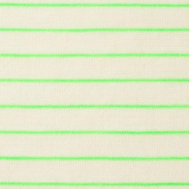コットン&アクリル混×ボーダー(イエローグリーン)×天竺ニット_全4色 イメージ1