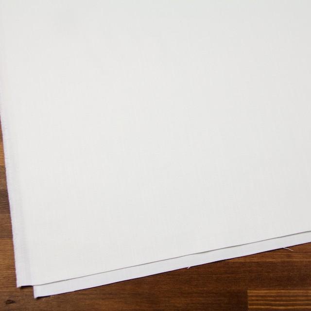 コットン×無地(オフホワイト)×カツラギ イメージ2