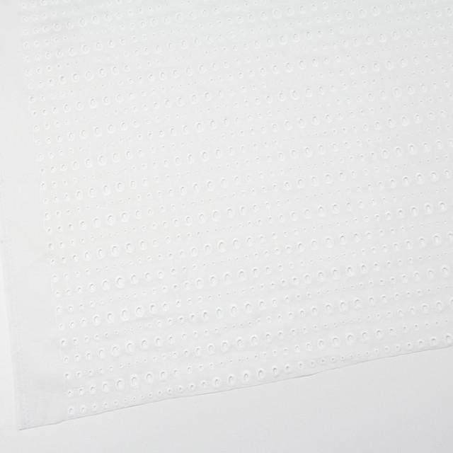 コットン×ドロップ(オフホワイト)×ローン刺繍 イメージ2