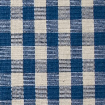 コットン×チェック(ブルー)×シーチング サムネイル1