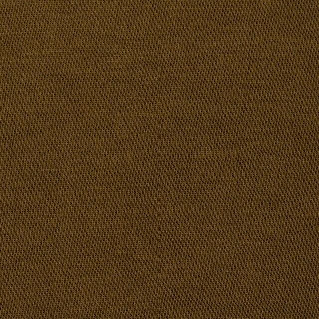 コットン×無地(ローアンバー)×天竺ニット イメージ1