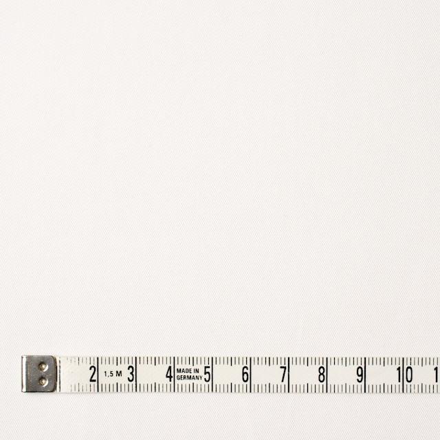 コットン×無地(オフホワイト)×サージ_全6色(シリーズ1) イメージ4