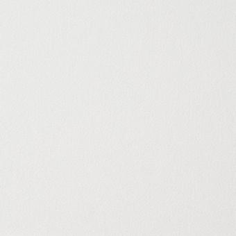 アピコ接着芯(薄地)_ナイロン(オフホワイト)_ウール素材の全面接着等に_全2色