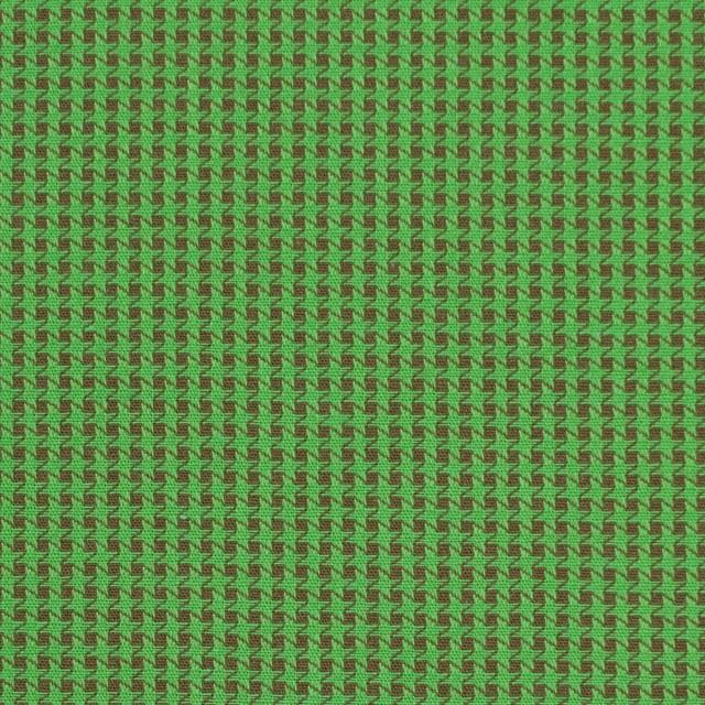 コットン×ウインドミル(メドウグリーン&ブラウン)×かわり織_全5色 イメージ1