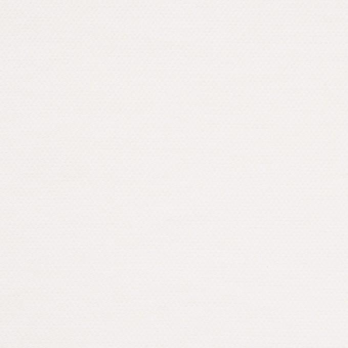 コットン×無地(ホワイト)×厚オックスフォード_全3色 イメージ1