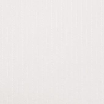 コットン&レーヨン×ストライプ(オフホワイト)×ブロードジャガード サムネイル1