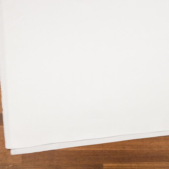 コットン×無地(オフホワイト)×チノクロス イメージ2