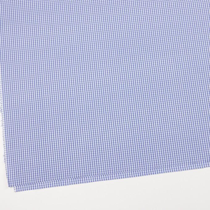コットン×チェック(サルビアブルー)×ブロード イメージ2