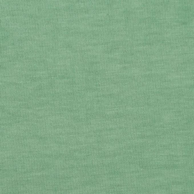 コットン×無地(グリーン)×天竺ニット_全2色 イメージ1