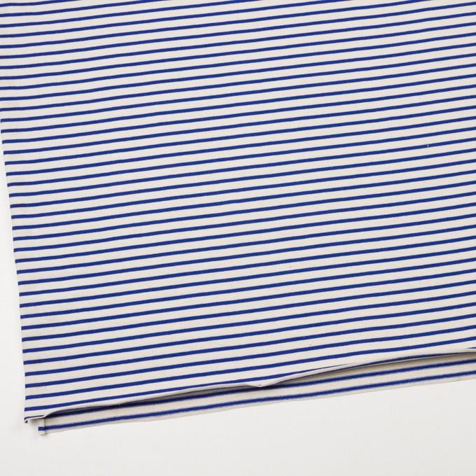 コットン×ボーダー(キナリ&マリンブルー)×天竺ニット イメージ2