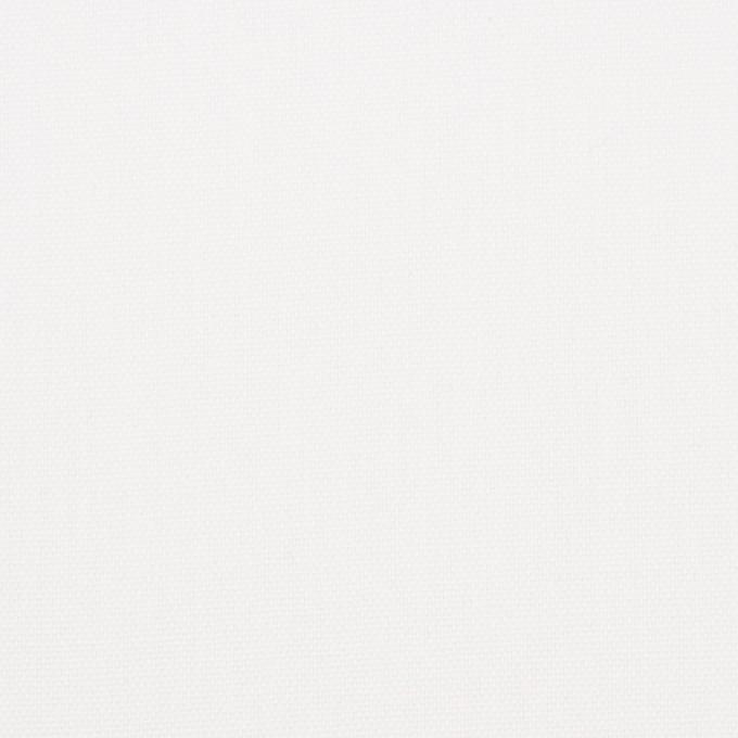 コットン×無地(オフホワイト)×オックスフォード イメージ1