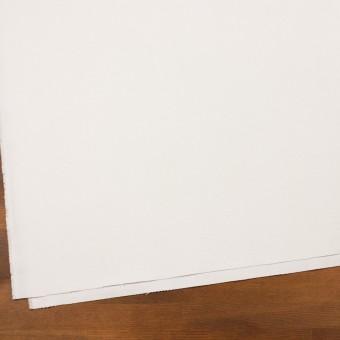 コットン×無地(オフホワイト)×フランネル_全8色 サムネイル2
