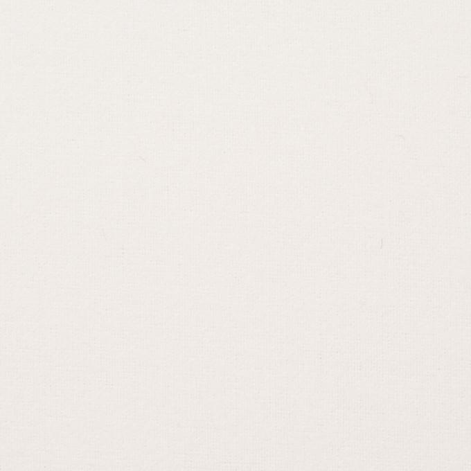 コットン×無地(オフホワイト)×フランネル_全8色 イメージ1