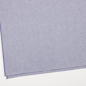 コットン×ストライプ(ブルー)×コードレーン サムネイル2